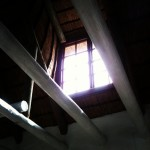 Day 16: sunray. Light through a window. Thoughts of my dad.